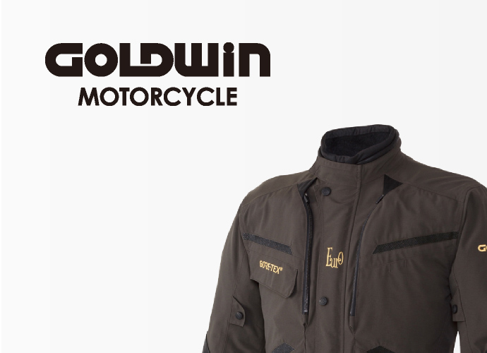 GOLDWIN MOTOR